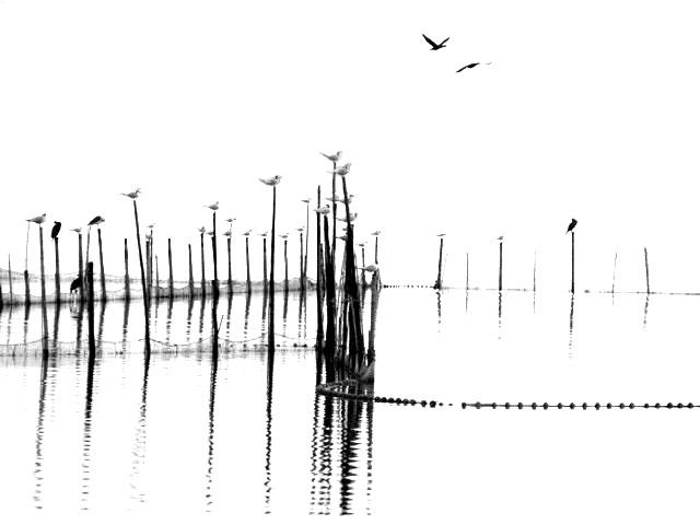 PROGRAMA DE PAISAJE LITORAL L'ALBUFERA |Fernandez – Vivancos